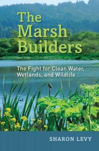 Cover: Marsh Builders