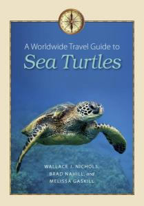 A World-Wide Travel Guide to Sea Turtles