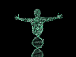 Art of DNA strands turning into a person