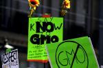 Anti-GMO protest image via Shutterstock