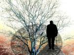 Silhouette of man in front of tree and clock